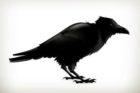Black raven, vector silhouette Ilustracja