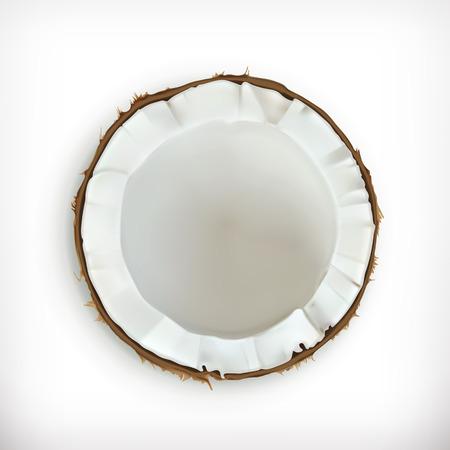 coconuts: Coconut, vector icon Illustration