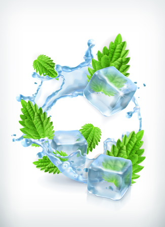 Mint with ice cubes and water splash, vector icon