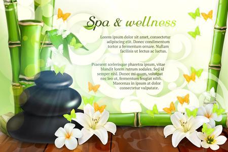 Spa y bienestar, de vectores de fondo