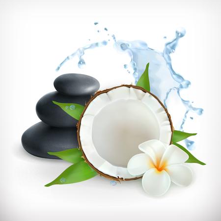 Kokosnoot, vector illustratie, geïsoleerd op witte achtergrondkleur