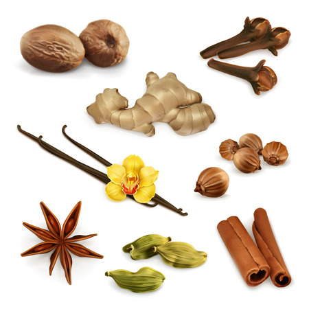 roots: Set with spices, vector icons, isolated on white background
