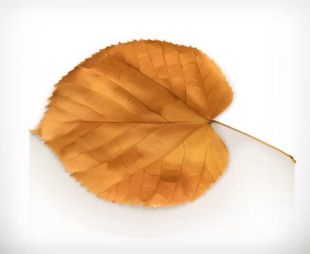 dode bladeren: Droog blad, herfst vector icon Stock Illustratie