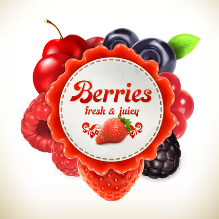 blackberry fruit: Berries, vector label, isolated on white background
