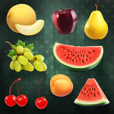 summer fruits: Set with summer fruits, vector illustrations on dark background Illustration