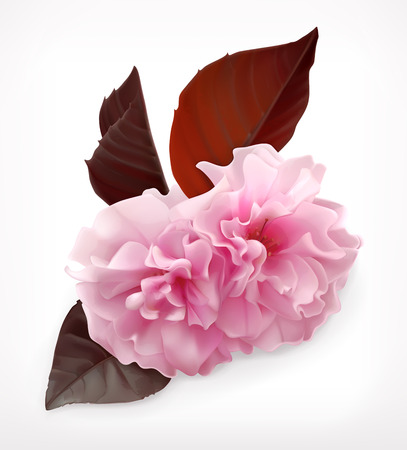 fleur de cerisier: cherry blossom fleur icône Illustration