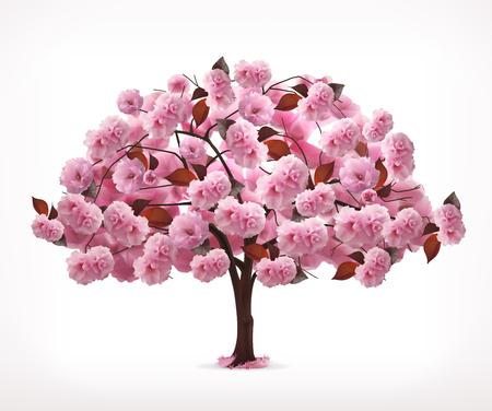 Printemps arbre rose, icône, isolé sur fond blanc