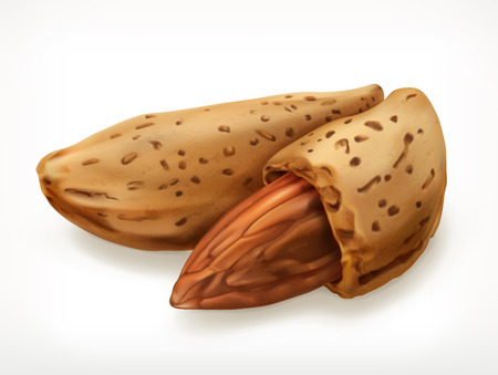almonds: Almonds in shell, icon, isolated on white background Illustration