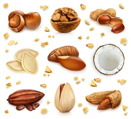 hazelnuts: Nuts in the shell, icon set, isolated on white background Illustration