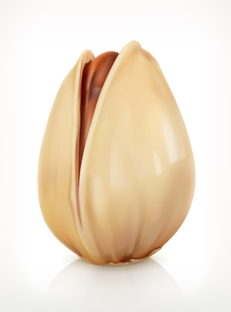pistachio: Pistachio in shell, icon, isolated on white background