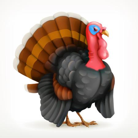 happy 3d: Turkey, icon, isolated on white background Illustration
