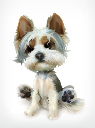 작은 강아지, 벡터 아이콘, 흰색 배경에 고립 일러스트