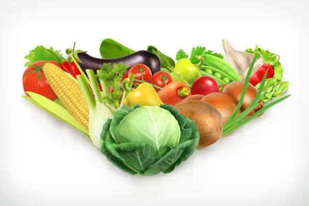 Kohl, Ernte saftig und reifen Gemüse Vektor-Illustration Vektorgrafik