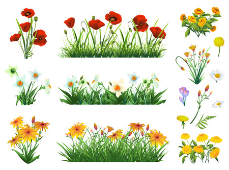 Flowers and grass set of vector elements. Nature and ecology