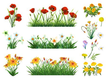 Flores y hierba conjunto de elementos del vector. La naturaleza y la ecología