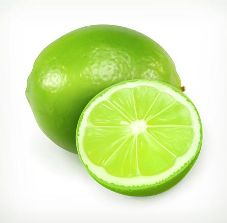 citrus fruit: Lime, citrus fruit vector icon