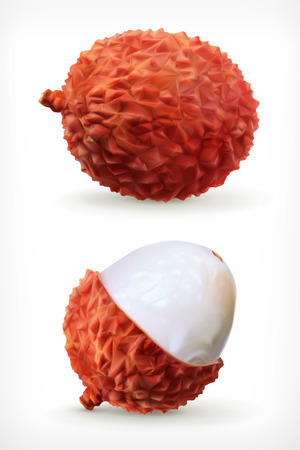 subtropical: Lychee, vector icon  on white background Illustration