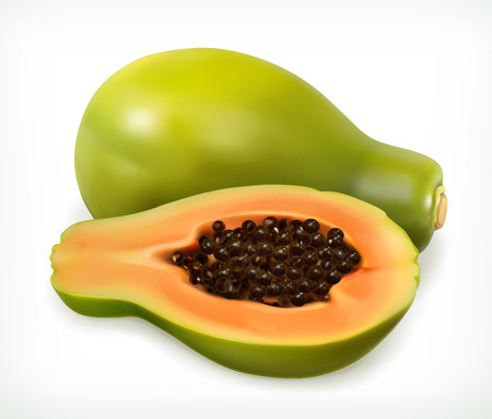illustration isolated: Papaya fruit. Vector icon  on white background