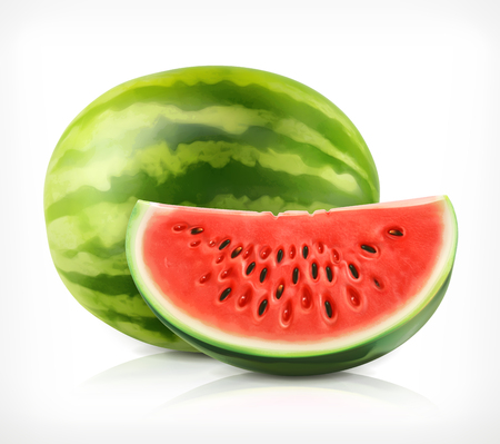 Watermelon, vector icon on white background