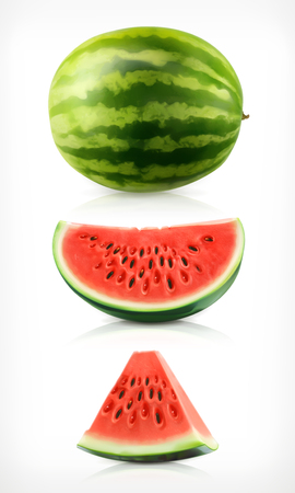 Watermelon, vector illustration icons set Illustration