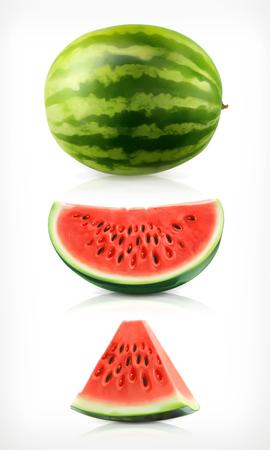 Watermelon, vector illustration icons set Illustration