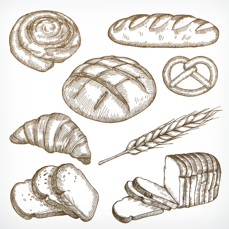 french countryside: Bread sketches hand drawing, vector set