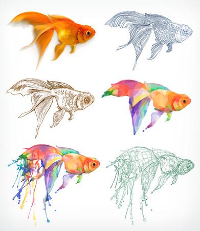 Goldfish verschillende stijlen, vectortekening pictogrammen instellen