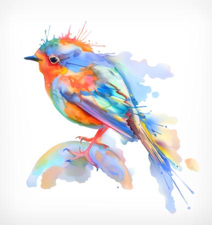 oiseau dessin: Petit oiseau, aquarelle illustration, vecteur isolé