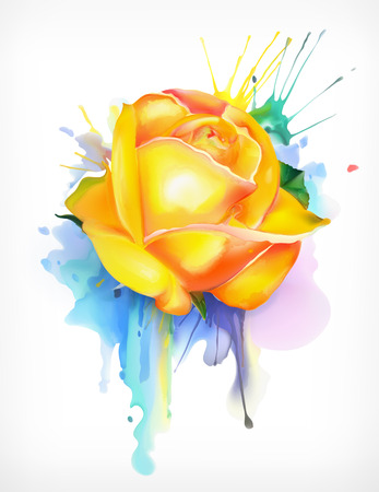 rose: Watercolor painting, yellow rose vector illustration, isolated on a white background
