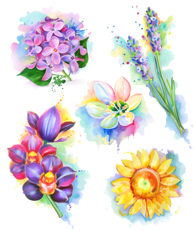 sunflowers: Beautiful flowers, watercolor painting, mesh vector icon set Illustration