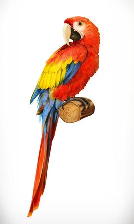 Ara parrot. Macaw. Photo realistic. 3d vector icon Banco de Imagens - 68115946