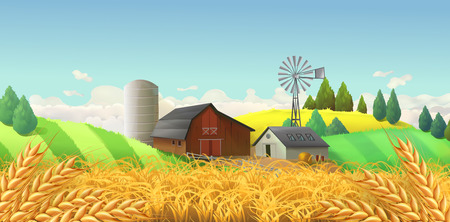 Wheat field. Farm landscape. Vector background
