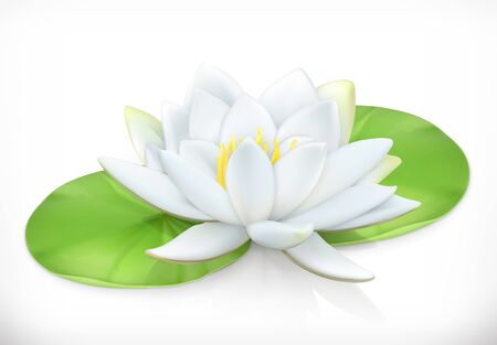 Water lily. Lotus flower. 3d vector icon