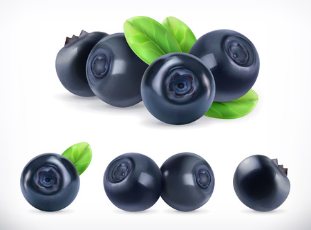 Blueberry. Sweet fruit. Forest berry. 3d vector icons set. Realistic illustration
