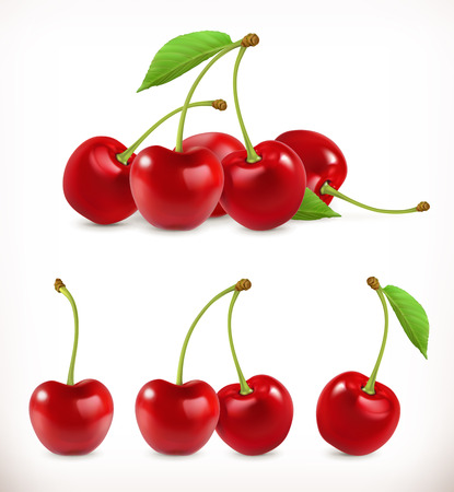 Cherry. Sweet fruit. 3d vector icons set. Realistic illustration