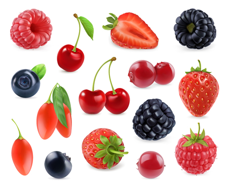 Forest berry. Sweet fruit. 3d vector icons set. Realistic illustration Ilustração