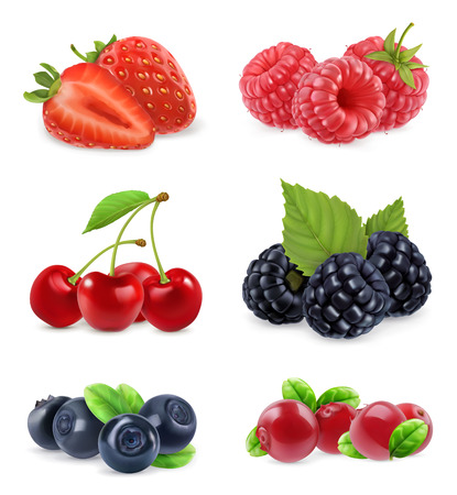 Bosbes. Zoet fruit. Realistische illustratie. 3d vector pictogram set