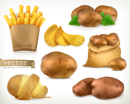 fry: Potato and fry chips. Vegetable 3d vector icon set Illustration