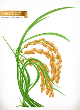 Rice. 3d vector icon
