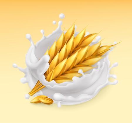 Wheat and milk splash. Barley realistic illustration. 3d vector icon Illustration