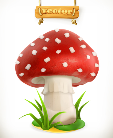 Fly agaric mushroom isolated in white.