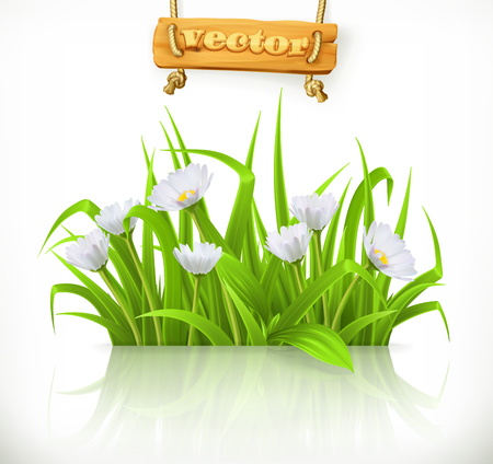 Spring grass vector icon. Illustration