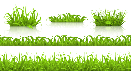 Spring grass seamless pattern and icons.