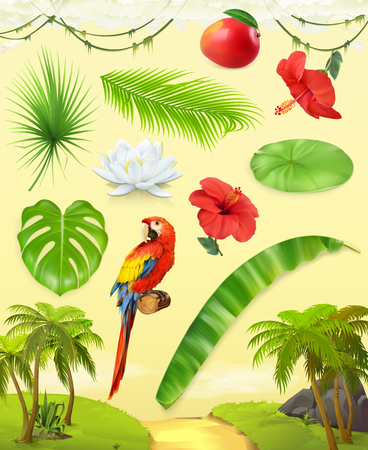 Jungle. Palm, banana, mango, parrot, water lily, hibiscus. Set of leaves and flowers. Tropical plants. 3d vector icon set