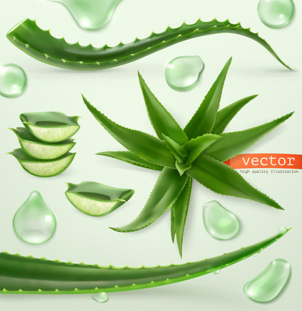 Aloe vera and drop. Medicinal plant. 3d vector icon set