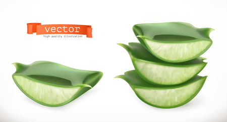 Aloe vera Medicinal plant 3d vector icon isolated on white background  イラスト・ベクター素材