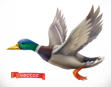 Duck for Hunting 3d vector icon Illustration