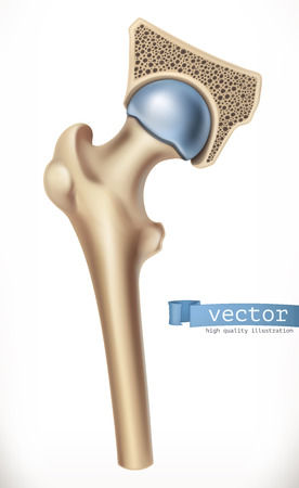 Joint of Human skeleton, medicine on 3d vector icon