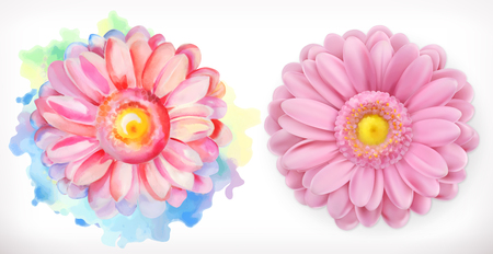 Spring pink flowers, Daisy, watercolor and 3d realism Illustration