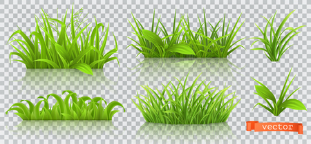 Spring, green grass. 3d realistic vector icon set Illustration